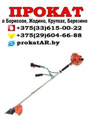 Прокат и аренда бензинового триммера в Борисове,  Жодино,  Крупках
