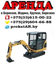Аренда (услуги) мини-экскаватора в Борисове,  Жодино,  Крупках,  Березино